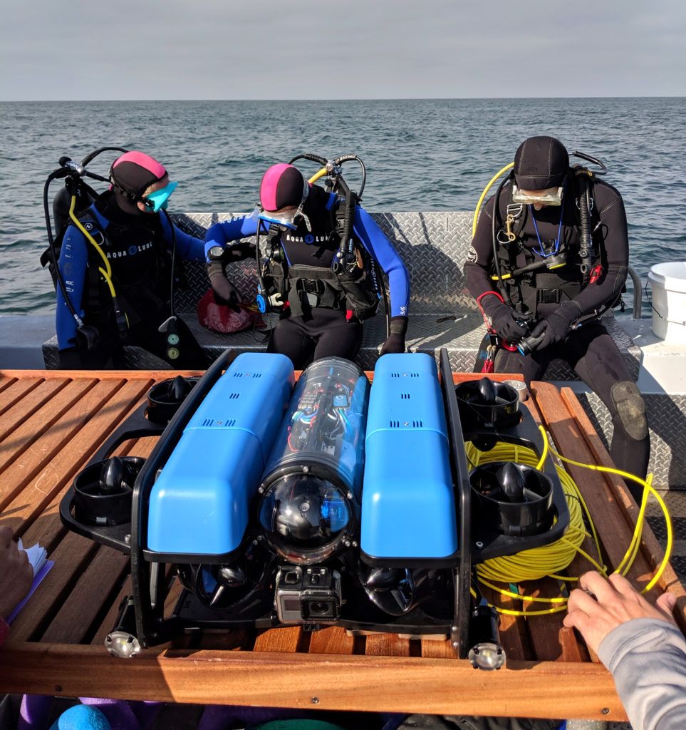 Divers gearing up for specimen collection with the <em>BlueROV2</em>