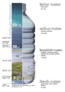 Water salinity by type